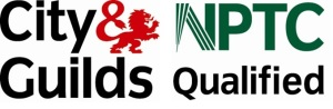 nptc city-and guilds qualified tree surgeon swansea